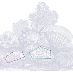 Footprint Digital: Sponges (not stones)